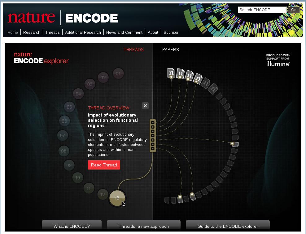 Capture d'ecran de la page de l'Encyclopédie ENCODE.