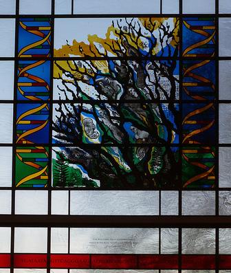 Vitrail dans un batiment du Wellcome Trust Genome Campus, Hinxton. (CC BY mararie)